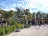 Punta Langosta